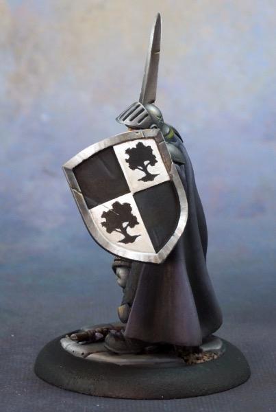 Baran s shield 500
